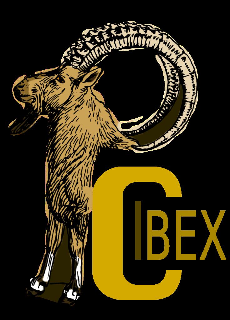 PCIbex Logo